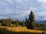 Early morning, late summer near Beckwith Pass