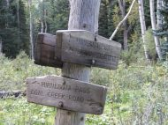 Trail junction in the dense forest of the West Elk Mountains