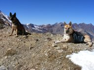 Leah and Draco on Copper Pass, Elk Mountains shortly before they close for the year