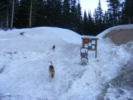 Old Monarch Pass trailhead