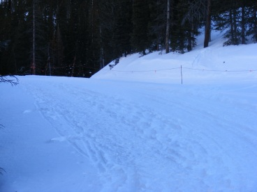 Behind the rope is a groomed trail used by Monarch Ski Area and their visitors