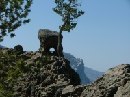 A bit of interesting geology at an overlook west of Wolf Creek pass
