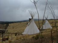 Teepees at Mission: Wolf. Used as needed by long and short term visitors