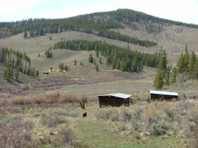 The Hughes Mine lies on the opposite side of Razor Creek Park from this cow camp