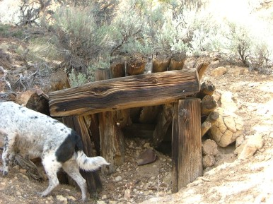 Lucky Dog at the caved-in entrance to the Hughes Mine