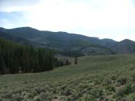 The Lower Park of Razor Creek