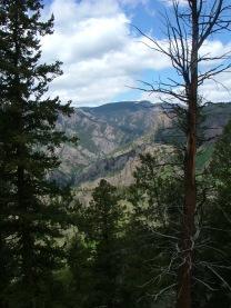 Another view of upstream West Elk Creek