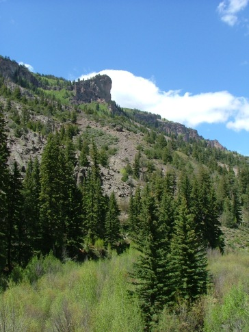 Looking up the slopes of the canyon created by West Elk Creek