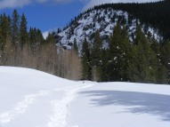 Looking upstream along the Gold Creek road, a half mile or so from the winter trialhead