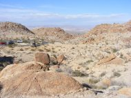 Looking over the desert valley from the 49 Palms trailhead