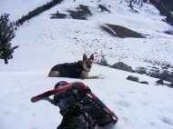 Draco and I rest out of the wind on Signal Peak