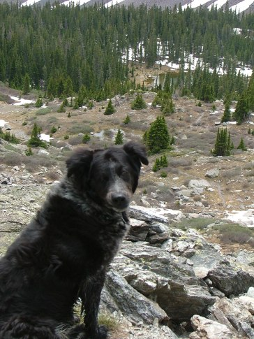 From Gunsight Pass, Lady Dog commands the view