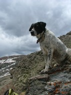 Stormy clouds did not distract Lucky Dog