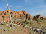 Between Bison Peak and McCurdy Mountain, unusual weathered and colored granite-like rock