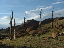 Tarryall Mountains experience