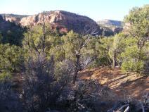 Canyon rim overlook