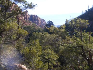 Typical view from within Big Dominguez Canyon