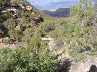 Desert landscape on the slopes of the Gunnison Gorge