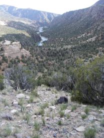 The Gunnison River flows from the right-hand canyon and Long Gulch flows from the left