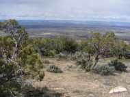 From the western rim of the Gunnison Gorge looking west towards the Uncompahgre Plateau