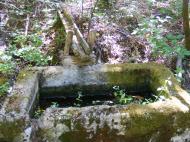 Watering trough along East Austin Creek Fire Road