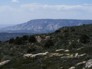 From Escalante Overlook, the great forces of the earth are evident when looking at the bent strata in the distance