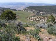 The vast plateau
