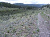 Along Bear Creek, not wilderness but still wild in its own way
