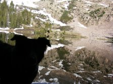 Lady Dog silhouetted against Mill Lake