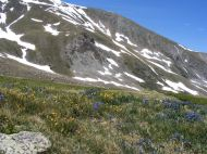 Alpine scenery in upper Missouri Gulch