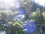 Morning light as Texas Creek rushes past