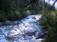 Swift water on Texas Creek