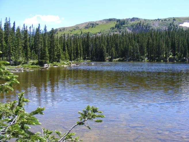 July's verdure in the Rocky Mountains of Colorado at one of the Waterdog Lake