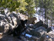 Lady Dog barely visible against the rock outcropping