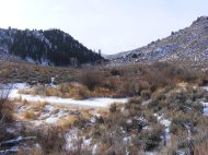 The bottom is wet and has a nice grass meadow but the hillsides are dry and full of sagebrush