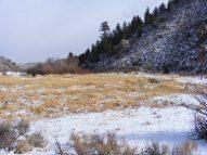 Near the transition to montane habitat