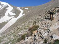 Leah on the trail near the Angel of Shavano
