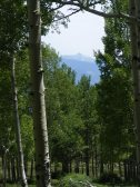 The Rocky Mountains in springtime along the Colorado Trail south of the Shavano Trail