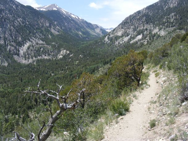 The drainage of the North Fork of the South Arkansas River as viewed from the Colorado Trail