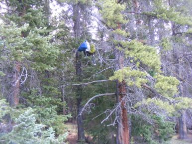 Hanging my food and other bear attractants