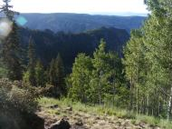 The rugged canyon of West Elk Creek