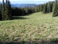 The West Elk Mountains in early summer