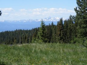The snowy San Juan Mountains as seen from many miles away in the West Elk Mountains