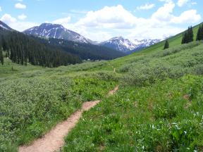 The West Maroon Pass Trail in the East Fork of Crystal River