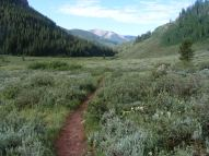 Cement Creek in the Elk Mountains