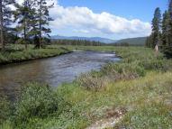 Texas Creek near the wilderness boundary