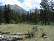 Entering the Sawatch Range in the Texas Creek drainage
