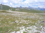 Looking north from American Flats; Wetterhorn Peak in view