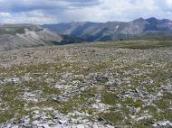 Dolly Varden Mountain on the far left lies over Henson Creek