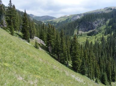 The South Fork of Bear Creek